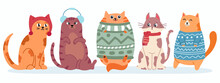 Cute Cats In Sweater. Happy Fat Kittens For New Year And Christmas Vector Banner. Xmas Domestic Kitty In Scarf
