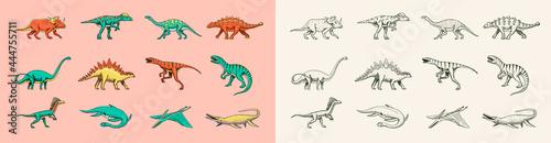 Fotografia Dinosaurs set, Tyrannosaurus rex, Triceratops, Barosaurus, Diplodocus, Velociraptor Triceratops Stegosaurus