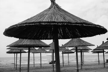 Czarno białe zdjęcie parasoli na plaży