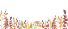 Watercolor Hand Painted Nature Autumn Plants Banner Line With Yellow Rye Ear, Brown Cereals, Orange Leaves On Branch And Green  Sprouts Composition On The White Background For Card Design