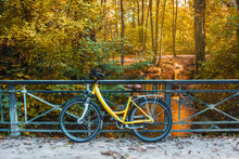 Bicycle On The Autumn Park Background. Weekend Walking Outdoor. Autumn Landscape