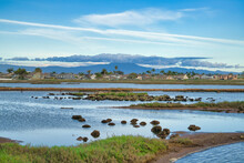 Wetland Against Distant Homes And Mountain At Bolsa Chica Ecological Reserve