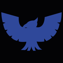 Blue Falcon From Video Game