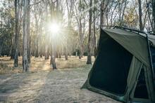 Tent At Sunny Campsite, Australian Bush