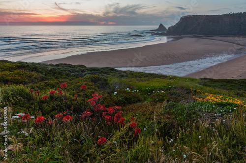 Pink sunset ocean scenery and summer Odeceixe beach (Aljezur, Algarve, Portugal).
