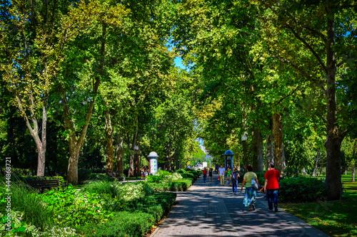 Canvas Print Krasnodar city boulevard