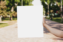 Male Hands Holding A White Empty Poster On The Background Of The Park