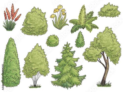 Billede på lærred Plant set graphic garden bush color side view isolated illustration vector