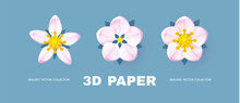 Paper Flowercollection. Cute And Soft Blossom Design.