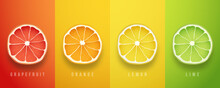 Grapefruit, Orange, Lemon And Lime Fresh Fruits. 3d Vector Realistic Set. Set Of Summer Greeting Cards, Banners, Cover Template. Stock Vector Illustration.