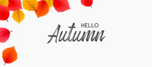 Hello Autumn Falling Leaves. Autumnal Foliage Fall And Poplar Leaves. Autumn Design. Templates For Placards, Banners, Flyers, Presentations, Reports.
