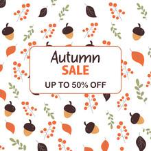 Sale, Discounts Autumn In Beige, Red Color. 50 %. Acorn, Leaves, Rowan