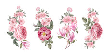 Watercolor Elements Of Blooming Flowers. Set Garden Flowers. Collection Botanic Illustration Leaves, Flower And Branches.
