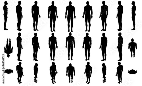 Fotografie, Obraz Set with silhouettes of a body of a man in different positions isolated on a white background