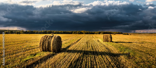 Obraz na plátně A field of a haystacks on an autumn day, illuminated by sunlight, with rain clouds in the sky