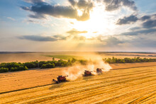 Harvesting Wheat. Three Red Combine-harvester Work In The Field. Beautiful Sky At Sunset. Aerial Drone Photo