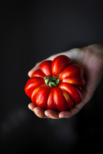 A Hand Holding A Red Heirloom Tomato