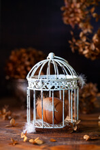 An Egg In An Ornamental Cage With Feathers Attached