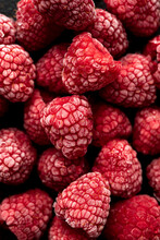 Close Up Of Frozen Raspberries With Ice On Them