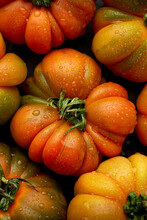 Closeup Of Red Beefsteak Tomato