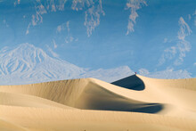 Alone On The Dune