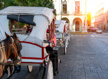 Mexico, Horse Carriages Waiting For Tourists Near Central Plaza Grande In Merida In Front Of Cathedral Of Merida, The Oldest Cathedral In Latin America.