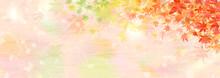 赤黄緑のグラデーションに染まった楓の葉の背景イラスト