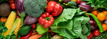 Fresh Organic Vegetable. Background From Vegetables. Top View. Banner