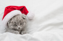 Cute Kitten Wearing Red Santa Hat Lying Under A White Warm Blanket On A Bed. Top Down View. Empty Space For Text