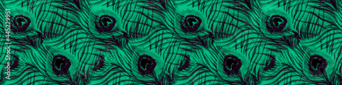 Emerald Bird Feathers Pattern. Watercolor Animal Poster Mural XXL