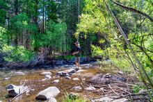 Senior Male Fly Fishing In Rush Creek Along The June Lake Loop In The California Eastern Sierra Mountains.