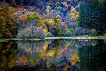 Breathtaking View Of Autumn Trees Reflected On A Tranquil Lake