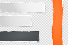 Set Of Torn White, Black And Orange Paper Stripes Stuck On Squared Background For Text, Advertising. Vector Illustration