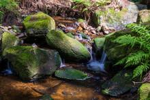 Fluss In Der Natur Mit Moos Bedeckten Steinen