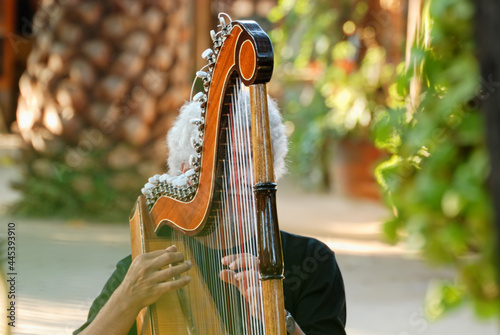 Fototapeta Close-up of a Musician playing harp outdoors in Chile