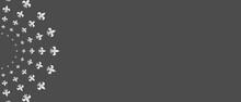 Web Banner With Circular Ornamental Design Element