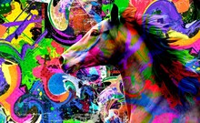 Background With Splashes And Horse