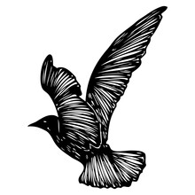 Isolated Marine Shape Stroke Silhouette Of Seagull Bird Flying In The Air Inspirational Body Flash Tattoo Ink For Sailor Vector.