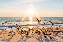 Sun Setting Over Flock Of Seagulls At Lovers Key State Park Beach With Glowing Triangle In Background