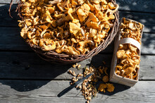Large And Small Basket Of Chantarelle Mushrooms