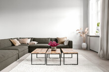 Modern Living Room With Sofa And Coffee Tables