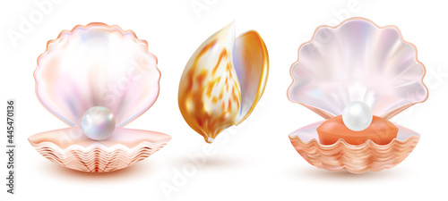Fotografering Pearl shell isolated on white background