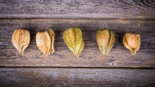 Row Of Physalis Or CapeGooseberry Fruit Over Old Wood Background