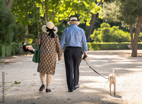 Canvastavla Elderly couple with a dog walking down the boulevard