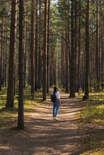Woman In A Light Shirt And Jeans Walking On A Wooden Path In Nature, National Park Or Forest, Swamp And Wooden Roads For Tourism And Hiking, Recreation And Sports In Nature, Enjoy The Peace And Beauty