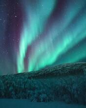 Starry Night Sky, Immortals ,crazy, Blue .etc - #.