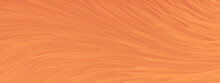 Abstract Orange Texture Background With Beautiful Feather.