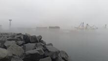 Morning Fog In City Harbour.