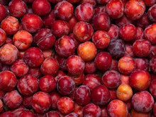 Background Of Cherry Plum In Different Shades In Full Screen. Autumn Wallpaper Made Of Exotic Southern Fruits. The Concept Of Harvesting.