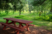Red Picnic Table In Idyllic Summer Orchard Under Shade Tree